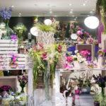 Bitxilore floristería en Vitoria-Gasteiz